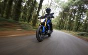 BMW G 310 R 2016 - Action (25)