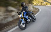 BMW G 310 R 2016 - Action (46)