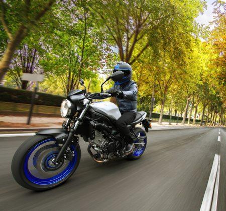 Sie ist zurück, die Suzuki SV650 fiel 2009 aus dem Programm und erlebt nun ihr Comeback.