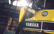Yamaha MT-09 Umbau - Yard Built 900 Faster Wasp 2015 (18)