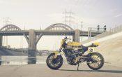 Yamaha MT-09 Umbau - Yard Built 900 Faster Wasp 2015 (24)