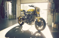 Yamaha MT-09 Umbau - Yard Built 900 Faster Wasp 2015 (27)